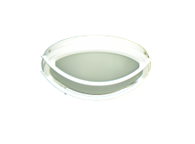 Picture of 163 Low Profile Light Fixture