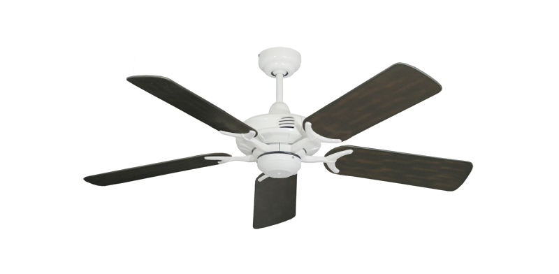 """Picture of Coastal Air Pure White with 44"""" Outdoor Oil Rubbed Bronze Blades"""