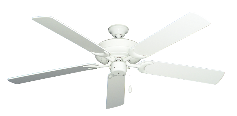 """Picture of Raindance Pure White with 60"""" Pure White Blades"""